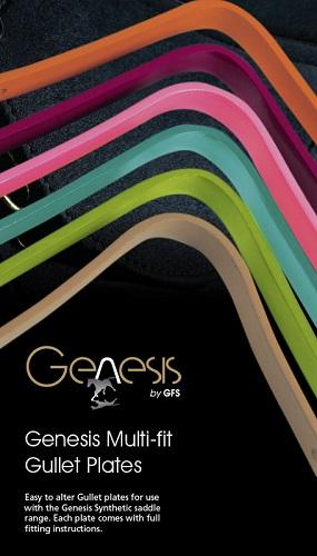 Bomjern Genesis og Heimer