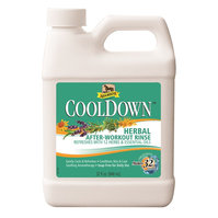 Cool Down Absorbine  950 ml