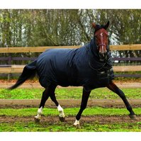 Horseware Trot vinterdekken
